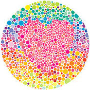 color-blindness-icon