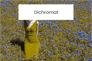 Dichromat-color-girl